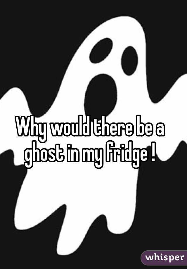 Why would there be a ghost in my fridge !