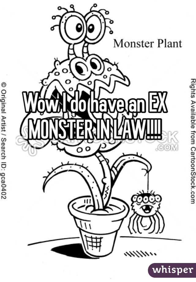 Wow I do have an EX MONSTER IN LAW!!!!