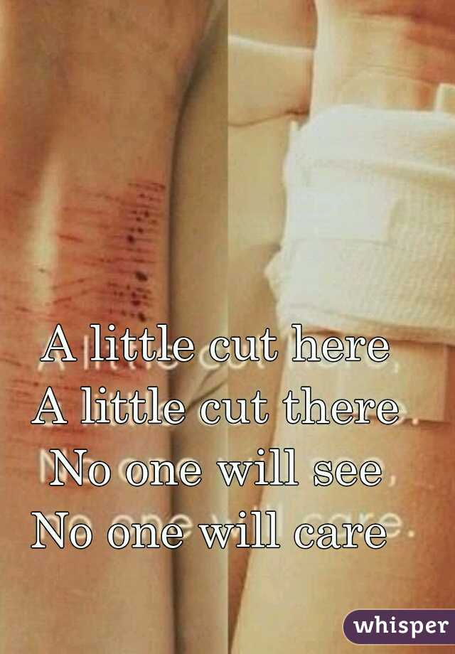 A little cut here A little cut there No one will see No one will care