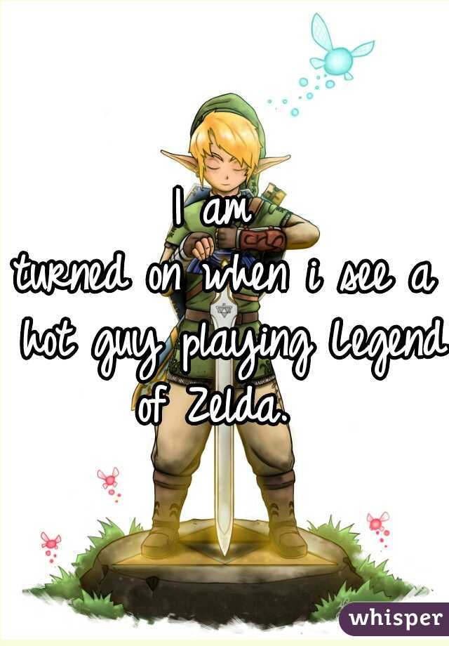 I am  turned on when i see a hot guy playing Legend of Zelda.
