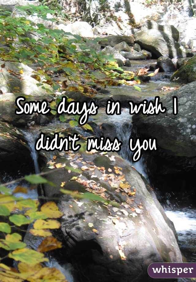 Some days in wish I didn't miss you