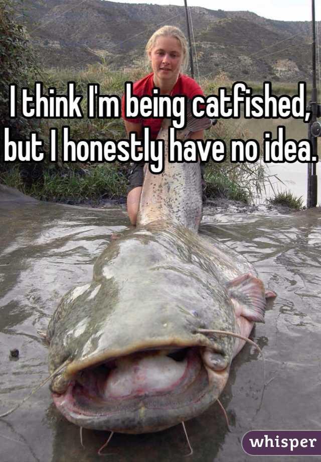 I think I'm being catfished, but I honestly have no idea.
