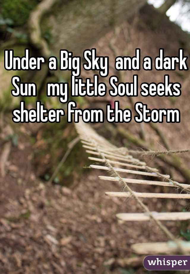Under a Big Sky  and a dark Sun   my little Soul seeks shelter from the Storm