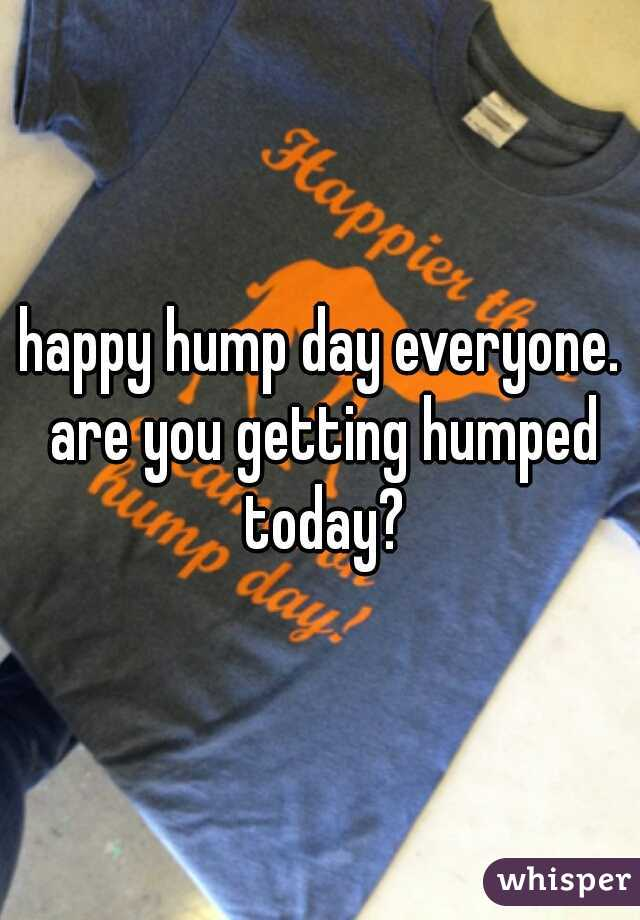happy hump day everyone. are you getting humped today?