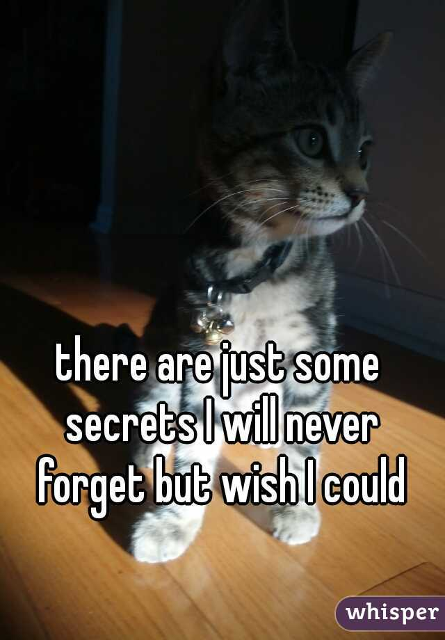 there are just some secrets I will never forget but wish I could