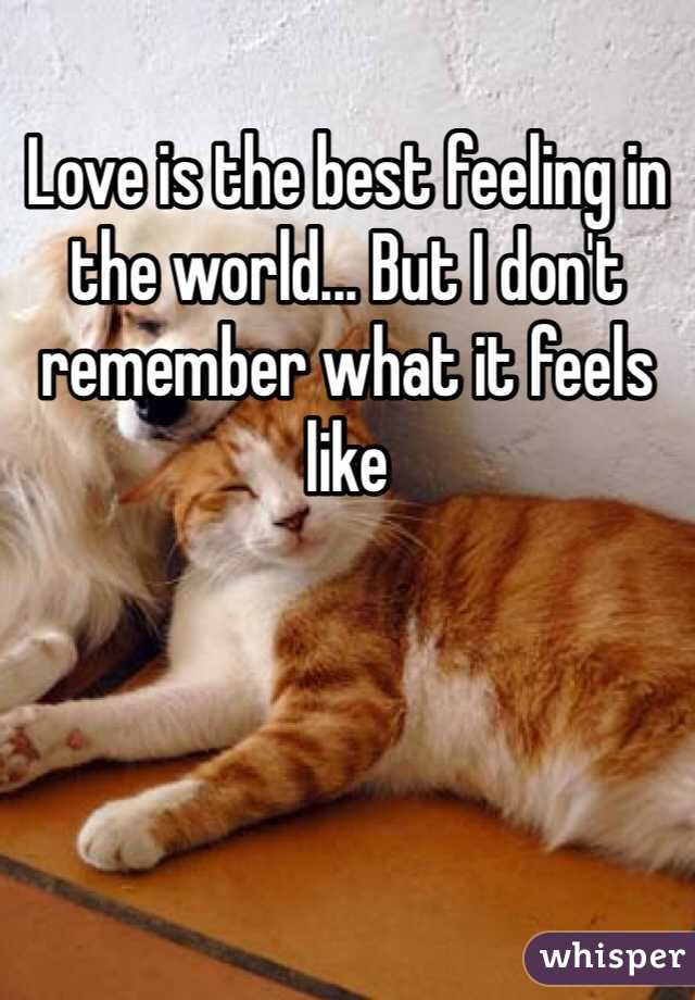 Love is the best feeling in the world... But I don't remember what it feels like