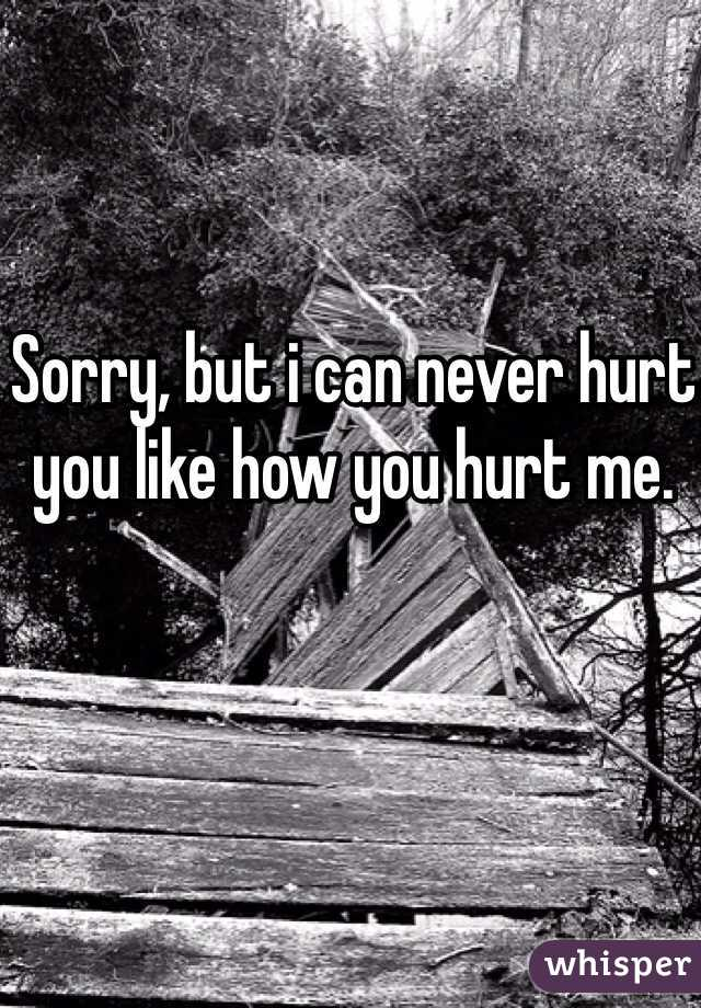 Sorry, but i can never hurt you like how you hurt me.