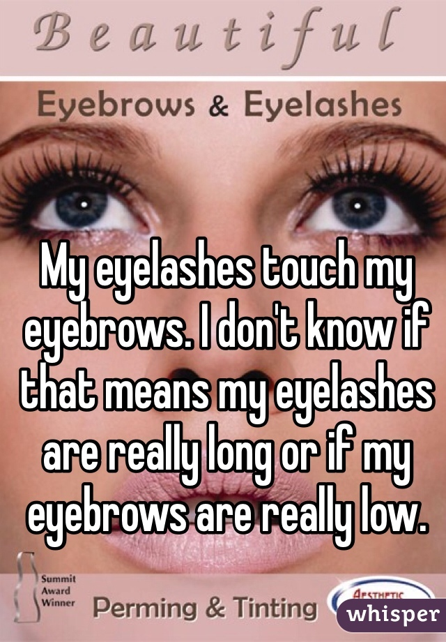 My Eyelashes Touch My Eyebrows I Dont Know If That Means My