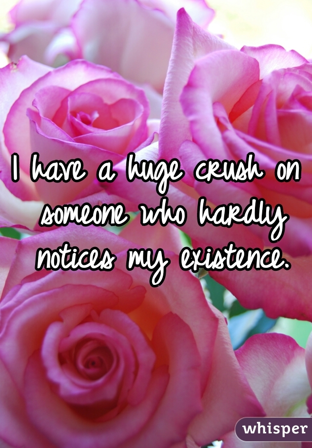 I have a huge crush on someone who hardly notices my existence.