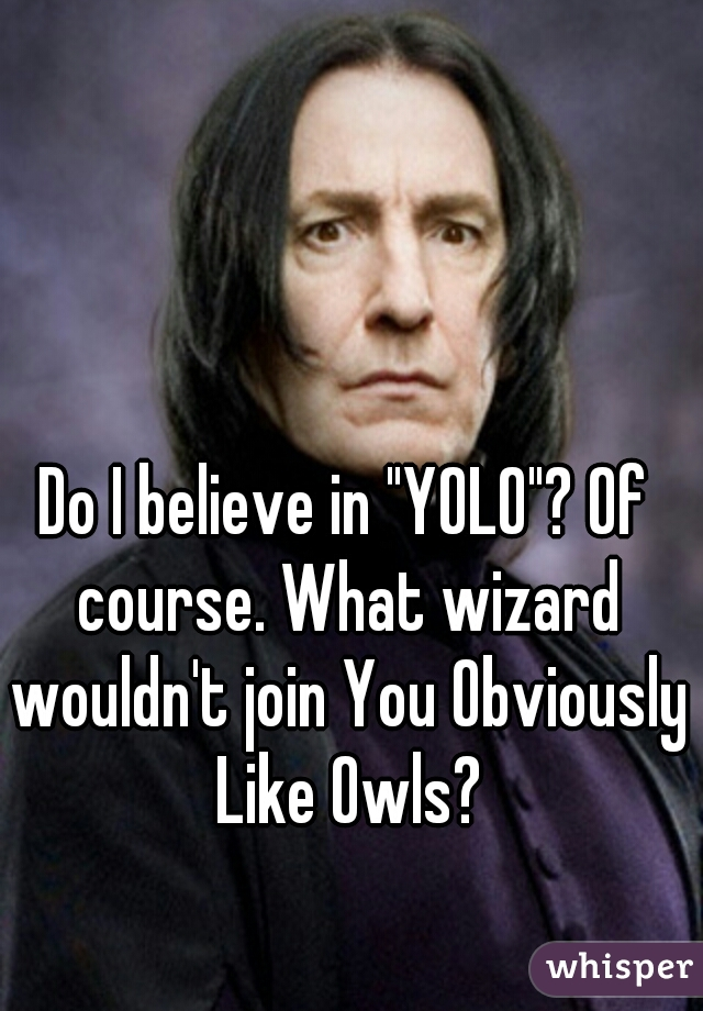 """Do I believe in """"YOLO""""? Of course. What wizard wouldn't join You Obviously Like Owls?"""