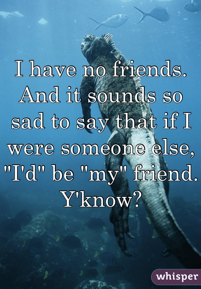 """I have no friends. And it sounds so sad to say that if I were someone else, """"I'd"""" be """"my"""" friend. Y'know?"""