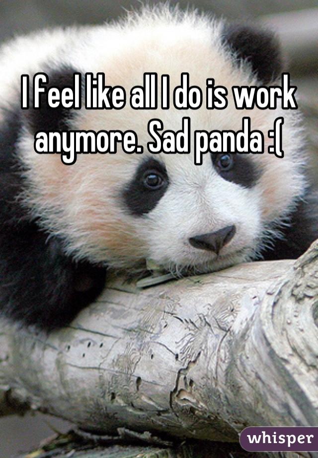 I feel like all I do is work anymore. Sad panda :(