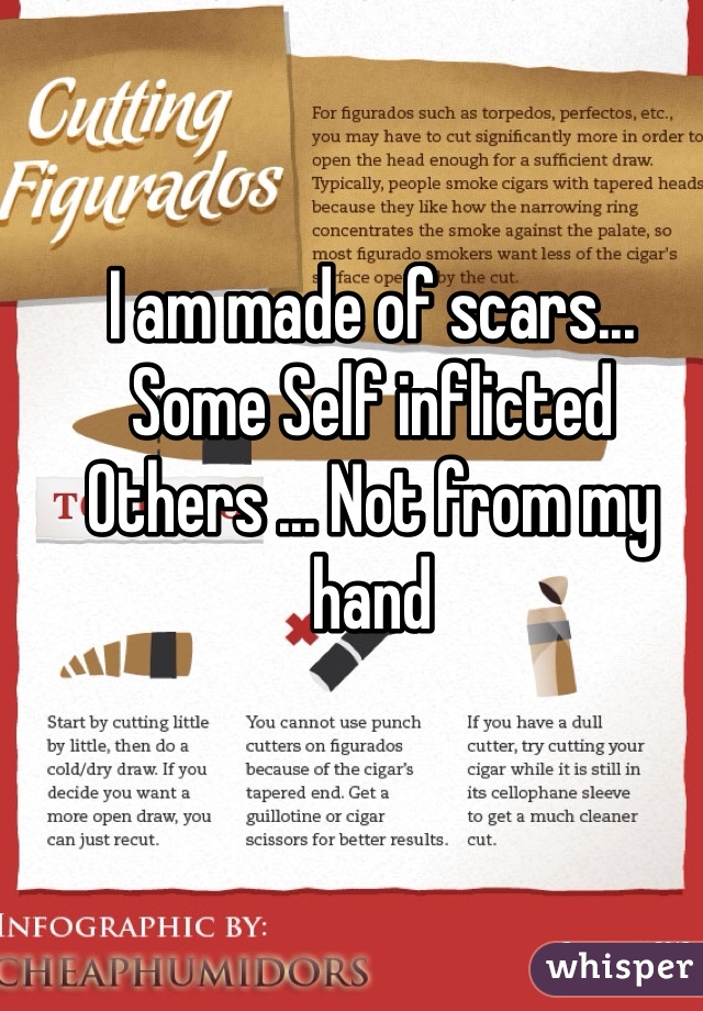 I am made of scars...  Some Self inflicted  Others ... Not from my hand