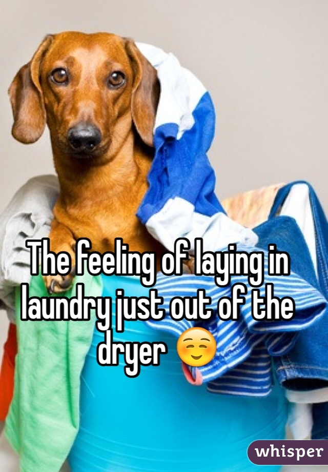 The feeling of laying in laundry just out of the dryer ☺️