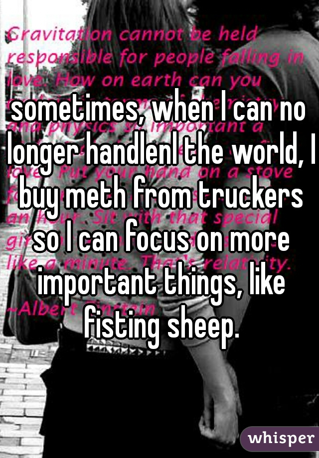 sometimes, when I can no longer handlenl the world, I buy meth from truckers so I can focus on more important things, like fisting sheep.
