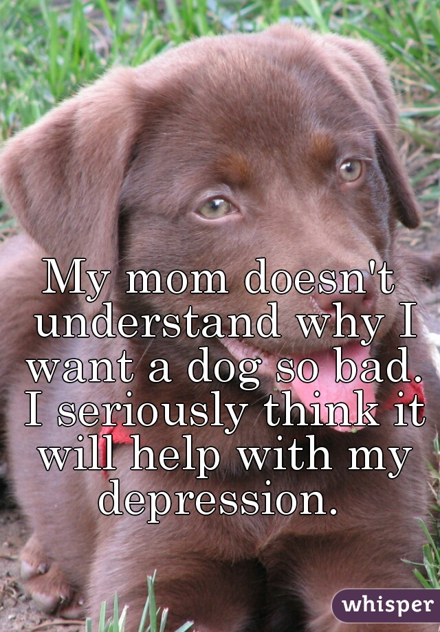 My mom doesn't understand why I want a dog so bad. I seriously think it will help with my depression.