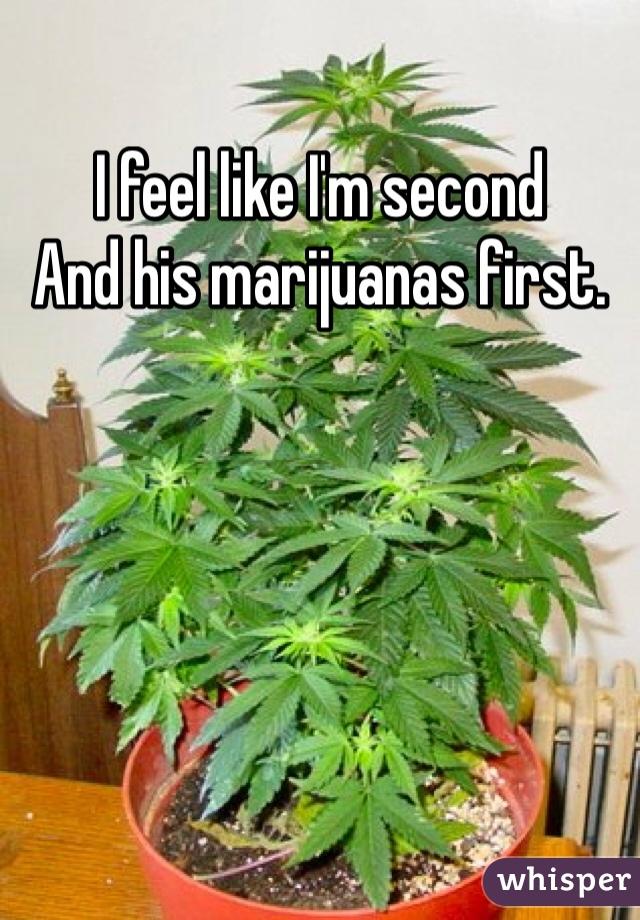 I feel like I'm second And his marijuanas first.