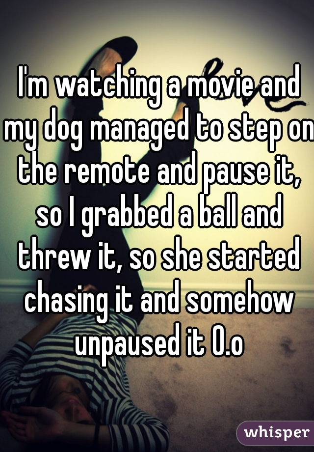 I'm watching a movie and my dog managed to step on the remote and pause it, so I grabbed a ball and threw it, so she started chasing it and somehow unpaused it 0.o