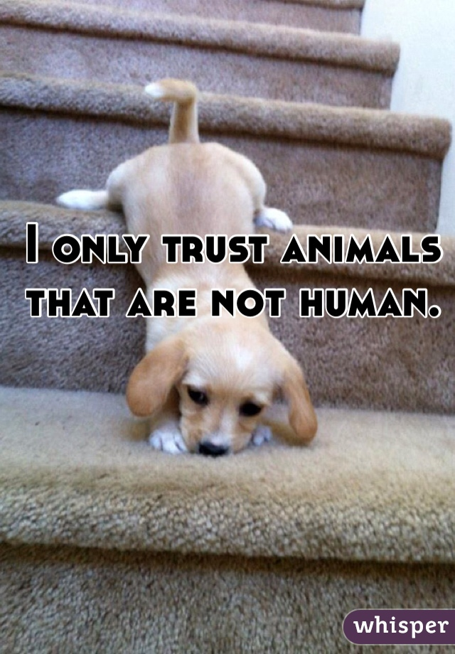 I only trust animals that are not human.