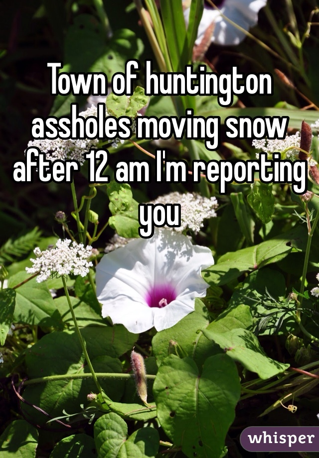 Town of huntington assholes moving snow after 12 am I'm reporting you