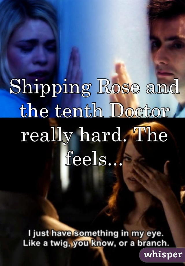 Shipping Rose and the tenth Doctor really hard. The feels...