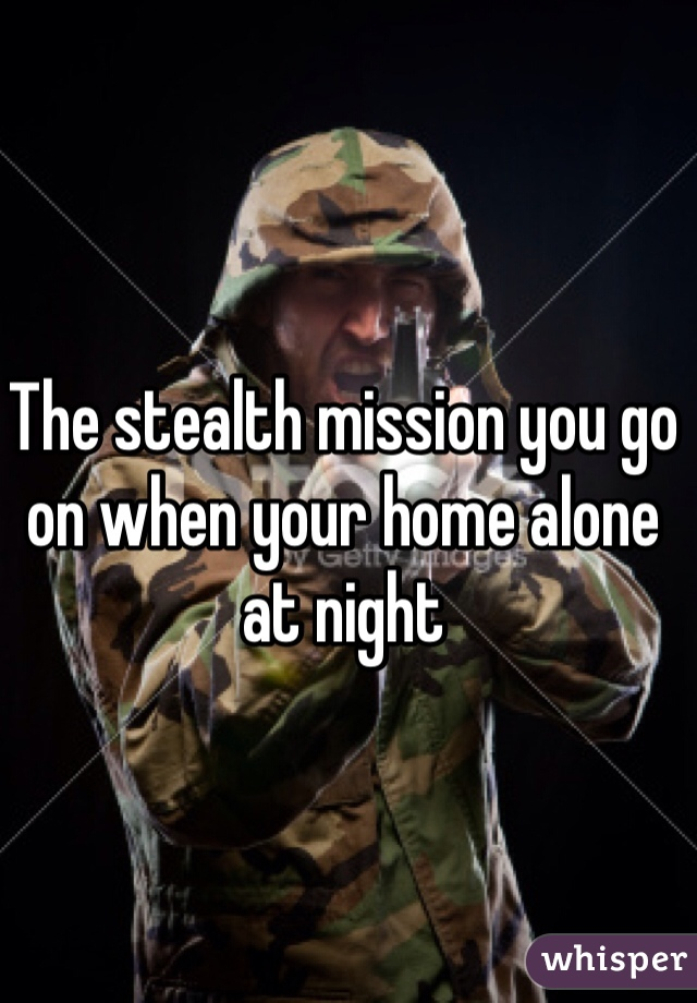 The stealth mission you go on when your home alone at night