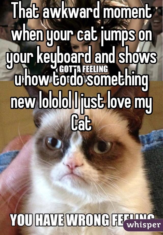 That awkward moment when your cat jumps on your keyboard and shows u how to do something new lololol I just love my Cat