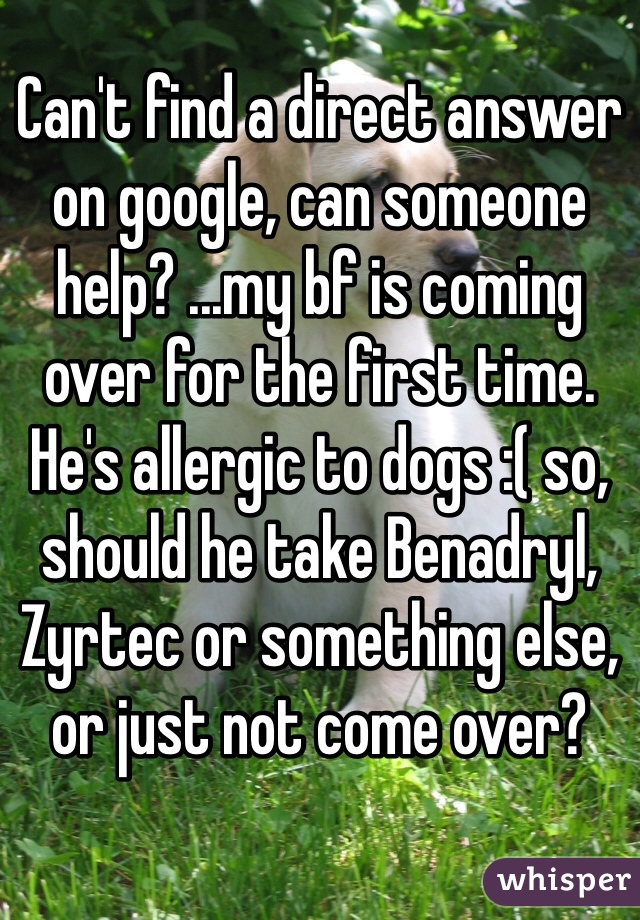 Can't find a direct answer on google, can someone help? ...my bf is coming over for the first time. He's allergic to dogs :( so, should he take Benadryl, Zyrtec or something else, or just not come over?