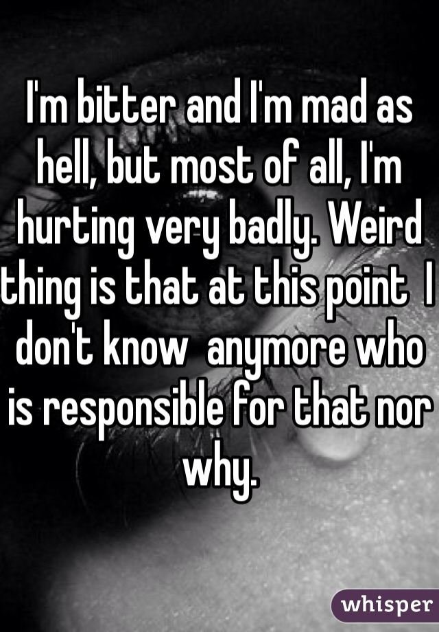 I'm bitter and I'm mad as hell, but most of all, I'm hurting very badly. Weird thing is that at this point  I don't know  anymore who is responsible for that nor why.