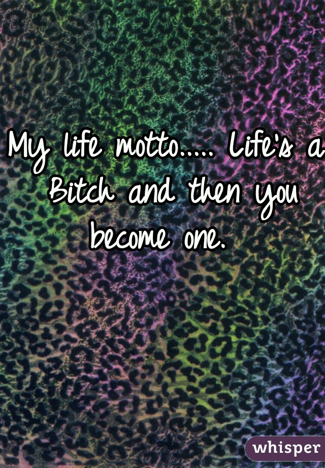 My life motto..... Life's a Bitch and then you become one.