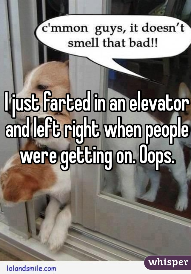I just farted in an elevator and left right when people were getting on. Oops.