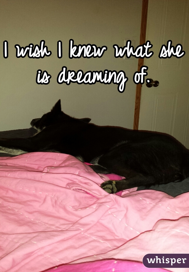 I wish I knew what she is dreaming of.