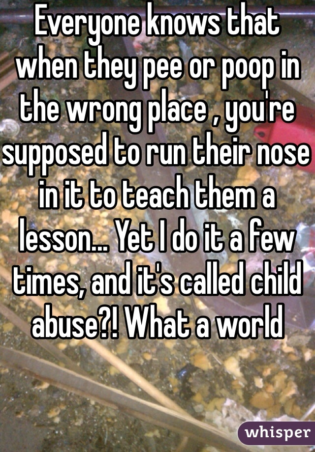 Everyone knows that when they pee or poop in the wrong place , you're supposed to run their nose in it to teach them a lesson... Yet I do it a few times, and it's called child abuse?! What a world