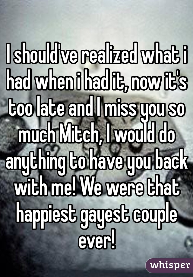 I should've realized what i had when i had it, now it's too late and I miss you so much Mitch, I would do anything to have you back with me! We were that happiest gayest couple ever!