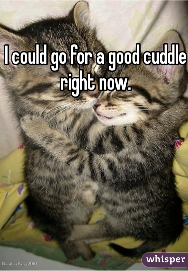 I could go for a good cuddle right now.
