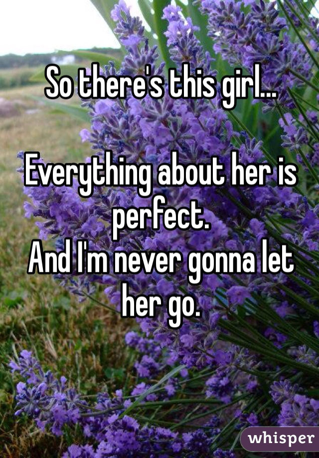 So there's this girl...  Everything about her is perfect.  And I'm never gonna let her go.