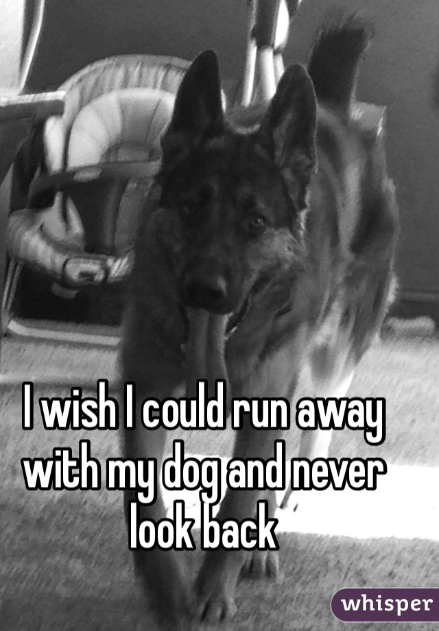 I wish I could run away with my dog and never look back