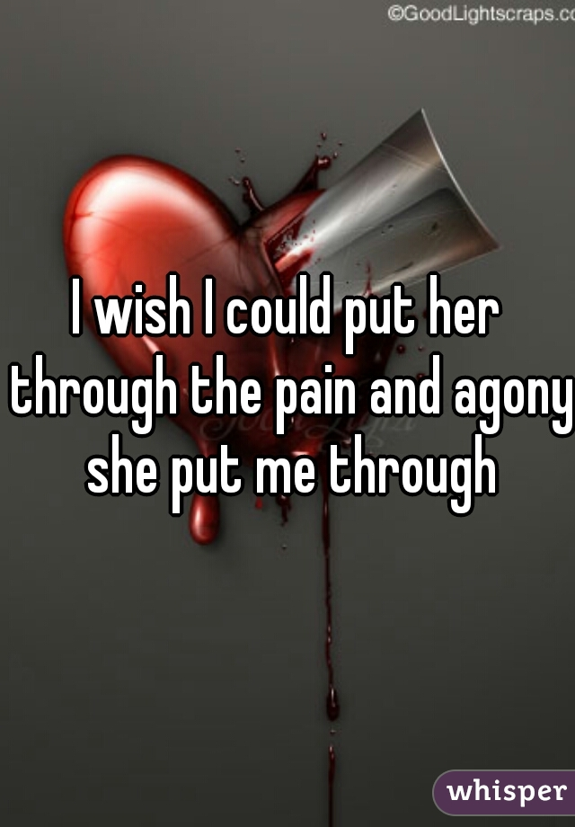 I wish I could put her through the pain and agony she put me through
