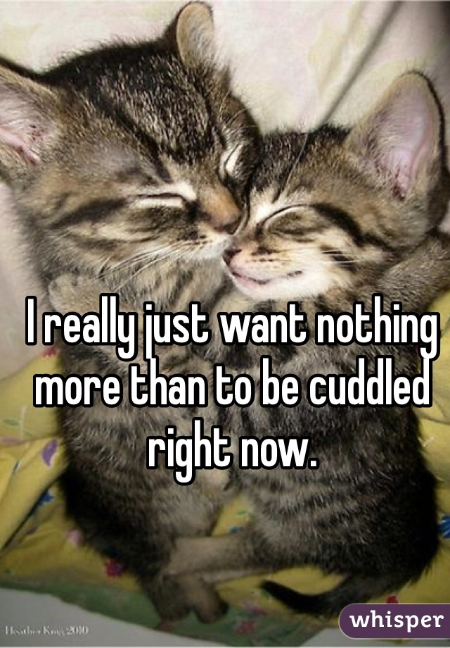 I really just want nothing more than to be cuddled right now.