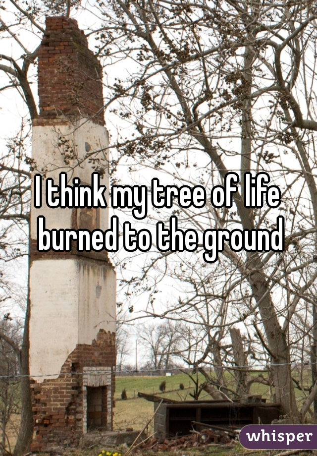 I think my tree of life burned to the ground