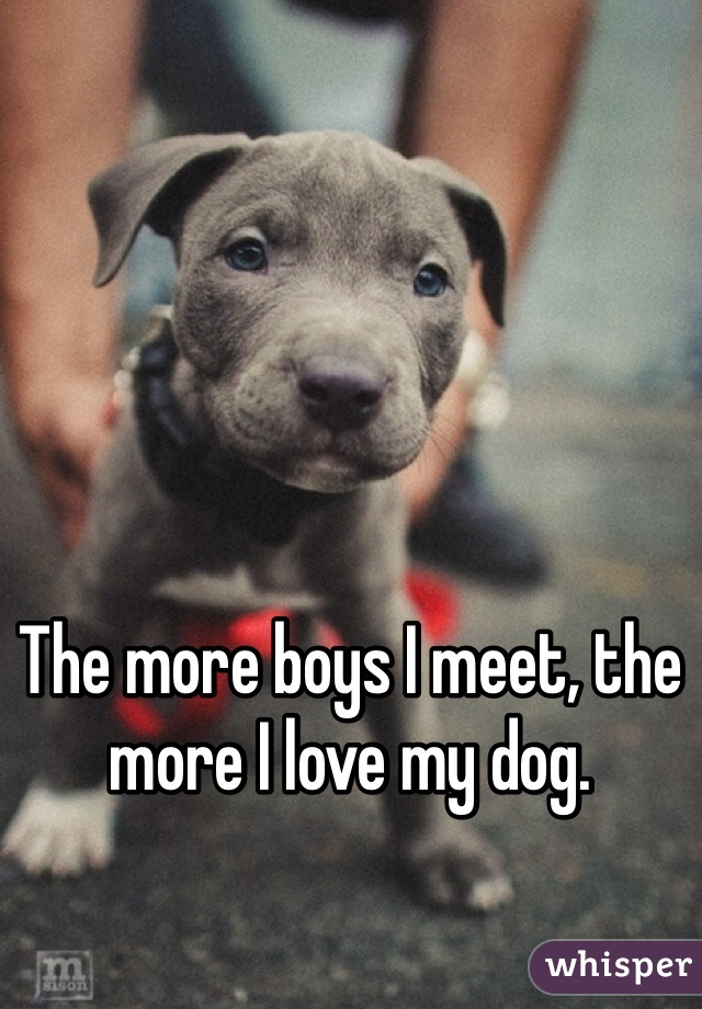 The more boys I meet, the more I love my dog.