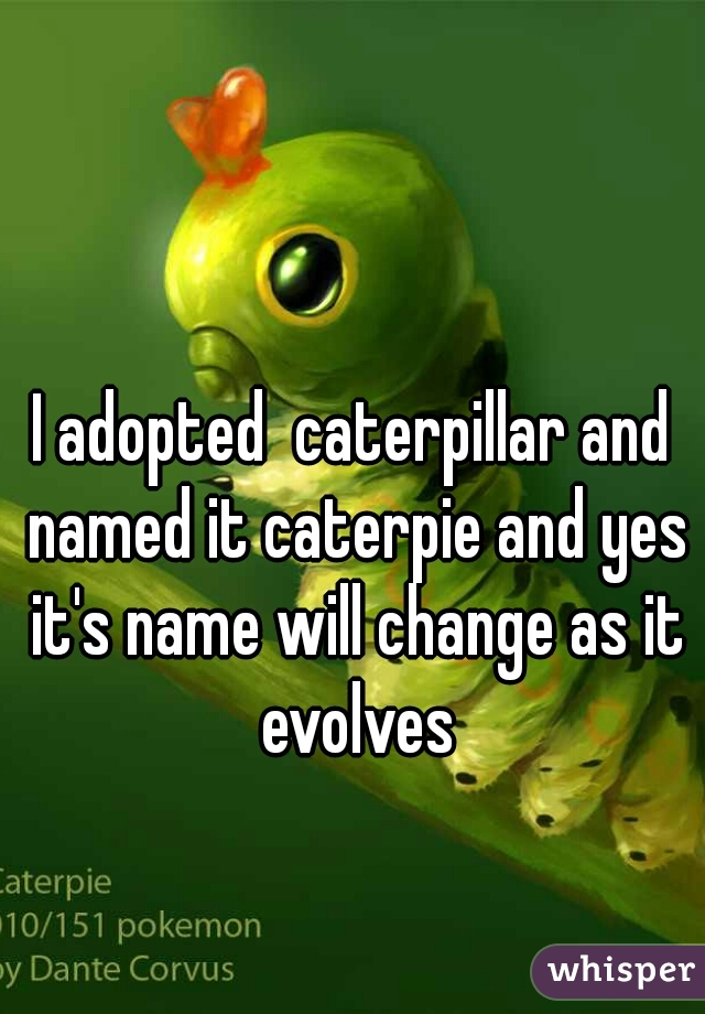I adopted  caterpillar and named it caterpie and yes it's name will change as it evolves