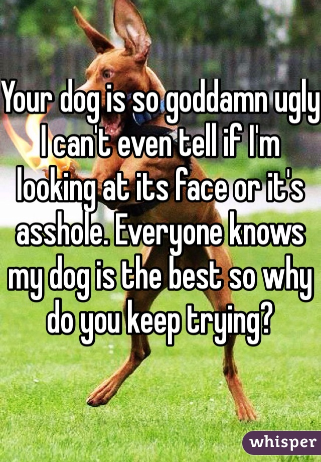 Your dog is so goddamn ugly I can't even tell if I'm looking at its face or it's asshole. Everyone knows my dog is the best so why do you keep trying?
