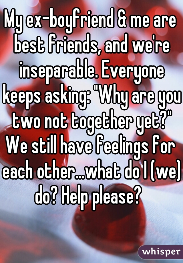 "My ex-boyfriend & me are best friends, and we're inseparable. Everyone keeps asking: ""Why are you two not together yet?"" We still have feelings for each other...what do I (we) do? Help please?"