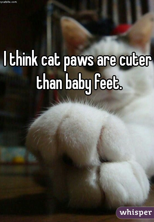 I think cat paws are cuter than baby feet.