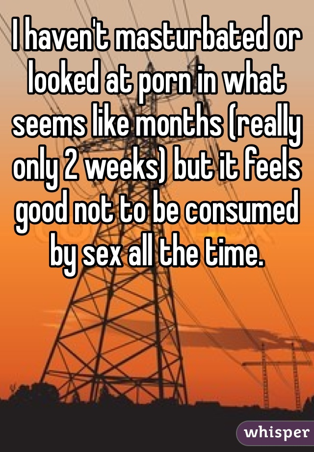 I haven't masturbated or looked at porn in what seems like months (really only 2 weeks) but it feels good not to be consumed by sex all the time.