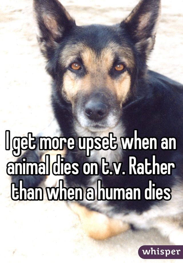 I get more upset when an animal dies on t.v. Rather than when a human dies