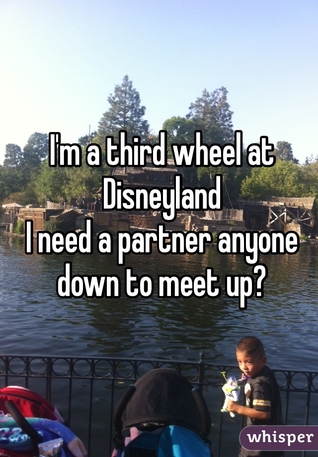 I'm a third wheel at Disneyland  I need a partner anyone down to meet up?