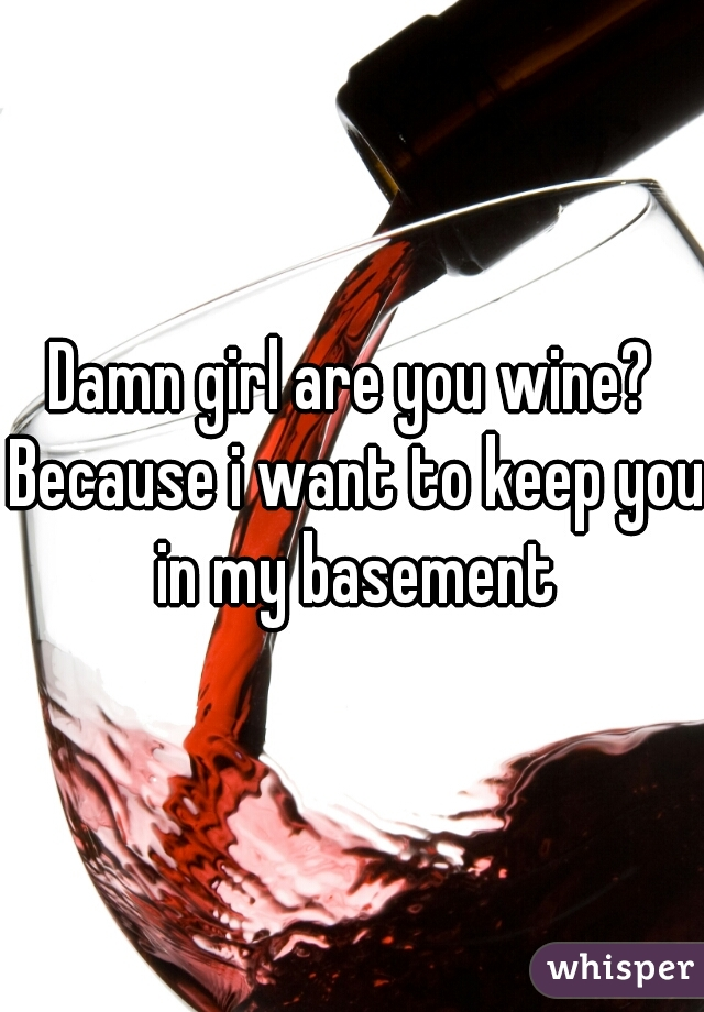 Damn girl are you wine? Because i want to keep you in my basement