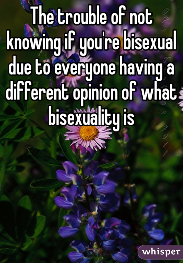 The trouble of not knowing if you're bisexual due to everyone having a different opinion of what bisexuality is